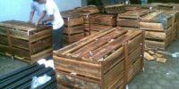 Packing.kayu_